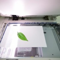 Image: Make your Business Greener with Document Management Systems