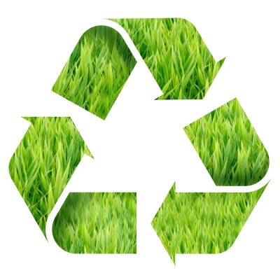 Go Green with Managed Document Services